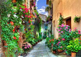 Улочка с цветами (П-50)