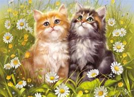 Два котенка с ромашками (Ж-21)