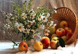 Ромашки и яблоки  в корзинке, Ц-118