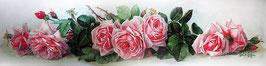 Розы длинные (ЦРП-2)