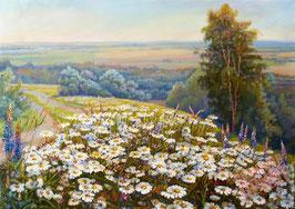 Ромашковое поле,(П-120)