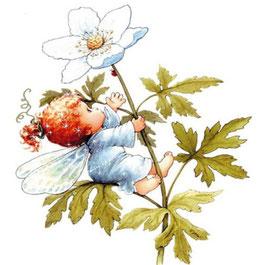 Ангел на цветке  (АП-5)