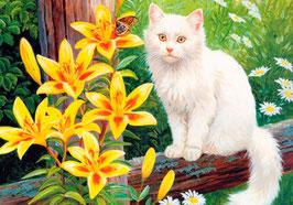 Три котенка (Ж-35)
