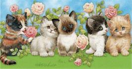 Котята с розами, ЖВ-1