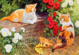 Кошки с астрами (Ж-19)