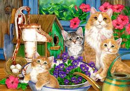 Кошачье семейство (Ж-36)