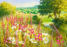 Пейзаж с иван-чаем, ромашками и ручейком, (П-35)