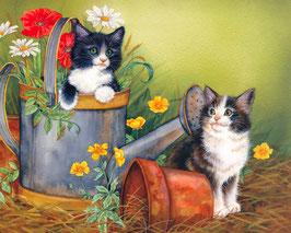 Два котенка с горшком