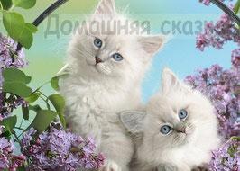 Белые котята в сирени (Ж-2)