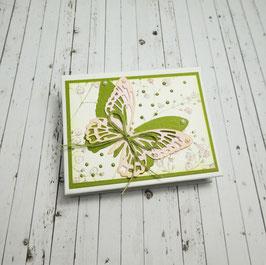 Memobox 7 - Schmetterling/Schleicherkraut