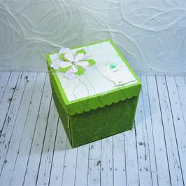 Oster - Überraschungsbox 1, Hellgrün