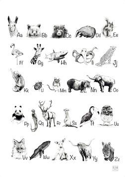ABC Dierenposter, schoolplaat