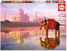 Éléphant au Taj Mahal