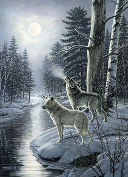 Wolfes by Moonlight