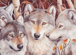 Wolf crowd