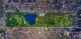 Panorama Central Park mappemonde 2016   (puzzle 3000 pièces)