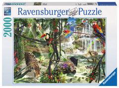 Animaux dans la jungle  (puzzle 2000 pièces)