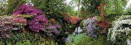 Bodnant garden (6000 pièces)