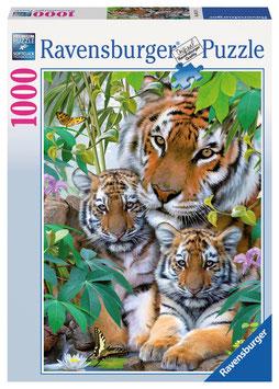 La famille tigre