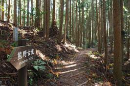 世界遺産・熊野古道への誘い