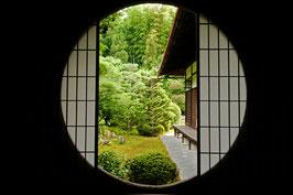「仏教、神道をマスターする講義」「東福寺・伏見稲荷コース」 5月14日 午前・午後セット料金