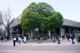 上野建築群まち歩きツアー 【講義B】