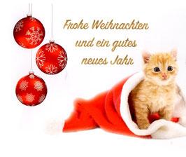 Weihnachtskarten inkl. farbigen Kuverts im 3er Set - Rückseite mit Anihope Logo