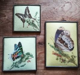 3er Set antike Bilderrahmen mit echten Schmetterlingen und Gräsern