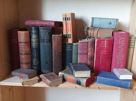 Sammlung alter Wörterbücher Dictionarys diverse Sprachen