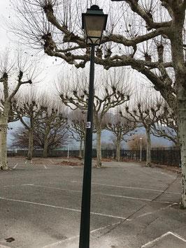 alte Straßenlaterne Parklaterne 4,80 m hoch (1 von 17 Stück)