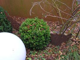 1 Paar eiserne Flügel für Buchsbaumkugeln