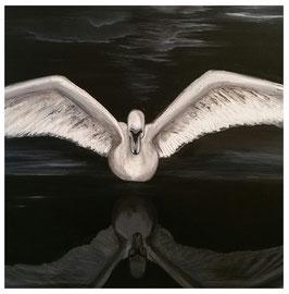 """Swan Mirrow"""