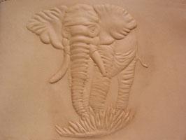 Tiere Relief Elefant
