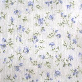 hellblaue Lieblingsblümchen Westfalen