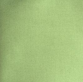 apfelgrün  Canvas