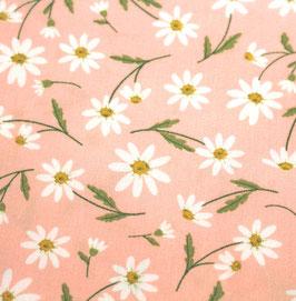rosa  Margeriten