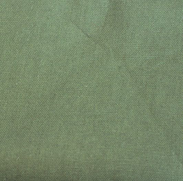 moosgrün Canvas