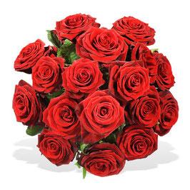 - 107 - Einfach rote Rosen