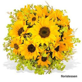 - 215 - Sonnenblumen