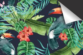 Tropical Toekan Inductie Beschermer