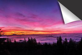 Roze landschap Inductie Beschermer