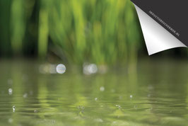 Watermugjes-Douwe-Inductie Beschermer