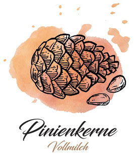 Vollmilchschokolade 40% Kakao mit Pinienkernen  100g