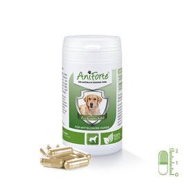 AniForte® ZeckenSchild -  natürliche Zeckenabwehr für mittelgrosse Hunde von 10-35 kg
