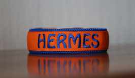 Halsband Gurtband Orange - bestickt 2,5cm