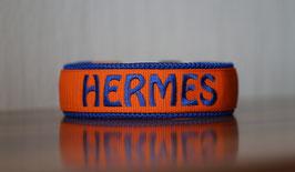 Halsband Gurtband Orange - bestickt 2cm