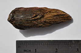 Indonesian sinking Agarwood 22,06 grams