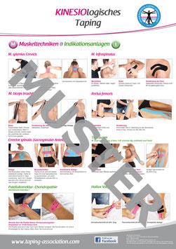 Übungsposter Muskeltechniken und Indikationsanlagen