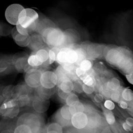 Licht 1 S/W