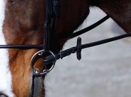 stübben steeltec BUCEPHALUS PRO HORSE BIT